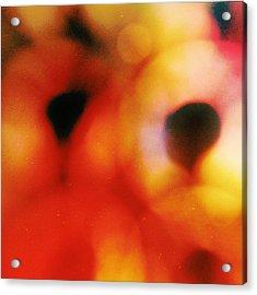 Polaris No. 2  Acrylic Print by Mark M  Mellon