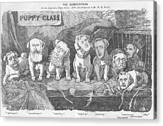 Political Puppy Class Acrylic Print