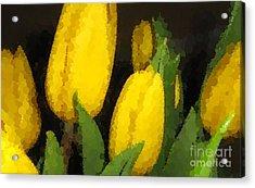 Polka Dot Yellow Tulips Acrylic Print by Barbara Griffin