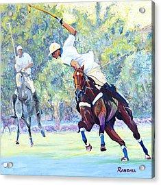Polo Acrylic Print by David Randall
