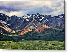 Polychrome Acrylic Print by Heather Applegate
