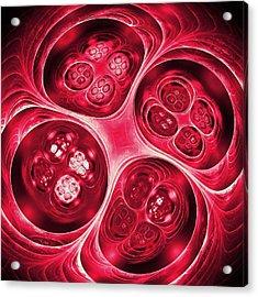Pomegranate Acrylic Print by Anastasiya Malakhova