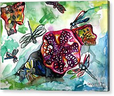 Pomegranate And Dragonflies Acrylic Print by Genevieve Esson