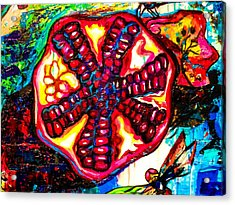 Pomegranate And Dragonfly Acrylic Print by Genevieve Esson