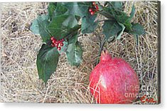 Pomegranate Love Forever Acrylic Print by Feile Case