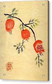 Pomegranates Acrylic Print