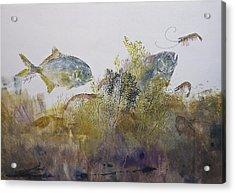 Pompano And Shrimp Acrylic Print by Nancy Gorr