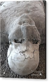 Pompeii Ash Skeleton Acrylic Print by Gregory Dyer