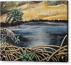 Pond 1 Acrylic Print