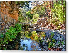 Pond At Lost Maples Acrylic Print