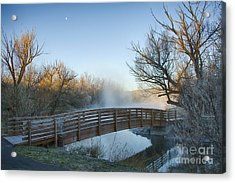 Pond Crossing Acrylic Print