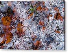 Pond Ice Art Acrylic Print