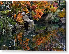 Pond In Autumn Acrylic Print