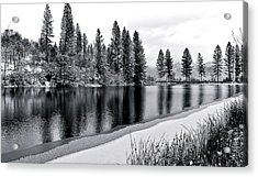 Acrylic Print featuring the photograph Pond In Snow by Julia Hassett