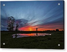 Pond In The Pasture Acrylic Print by Matt Molloy