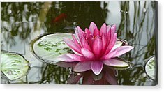 Pond Magic Acrylic Print
