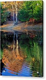 Pond Reflections Acrylic Print by William McEvoy