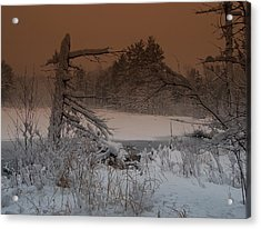 Pond Scape Acrylic Print by Mim White
