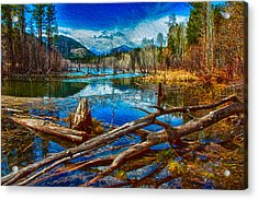 Acrylic Print featuring the painting Pondering A Mountain by Omaste Witkowski