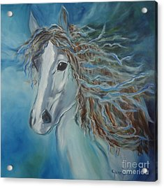 Acrylic Print featuring the painting Pony by Jenny Lee