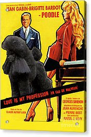 Poodle  Art - Love Is My Profession Acrylic Print