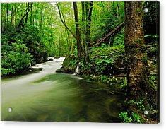 Pool In Little River Acrylic Print