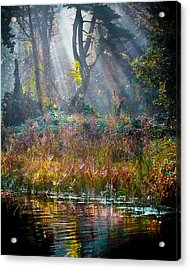 Pool Of Optimism Acrylic Print by Tom Cameron
