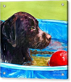 Pool Party Of One Acrylic Print by Molly Poole