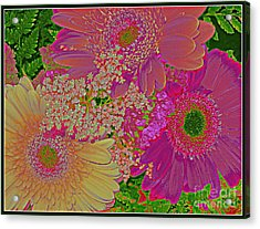 Pop Art Daisies Acrylic Print by Dora Sofia Caputo Photographic Art and Design