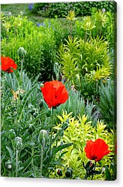 Pop Goes The Garden Acrylic Print