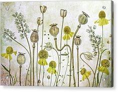 Poppies And Helenium Acrylic Print