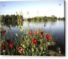 Poppies At Lake Acrylic Print