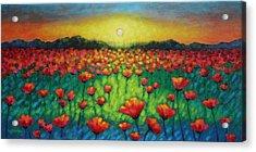 Poppies At Twilight Acrylic Print by John  Nolan