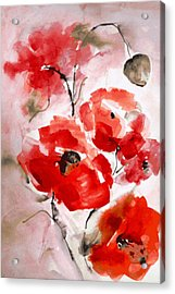 Poppies I Acrylic Print by Hedwig Pen