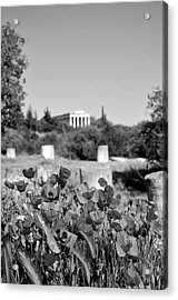 Poppies In Ancient Market Acrylic Print by George Atsametakis
