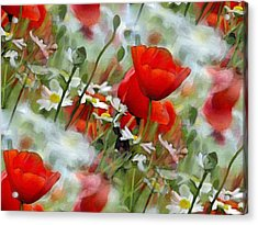 Poppies In The Field Acrylic Print