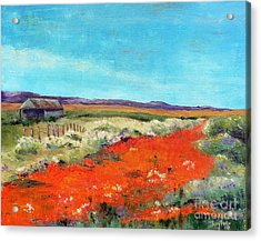 Poppies In The Meadow Acrylic Print
