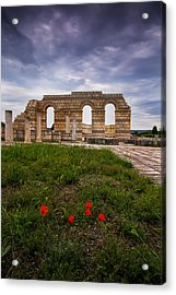 Poppies In The Ruins Acrylic Print by Eti Reid