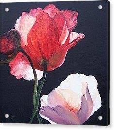 Poppies On Black Acrylic Print