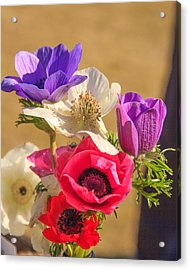 Acrylic Print featuring the photograph Poppies by Patricia Schaefer