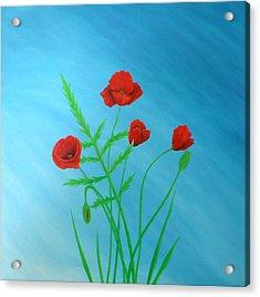 Poppies Acrylic Print by Sven Fischer
