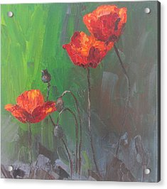Poppies3 Acrylic Print by Susan Richardson