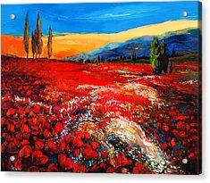 Poppies'field Acrylic Print by Ivailo Nikolov
