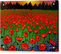 Poppy Carpet  Acrylic Print by John  Nolan
