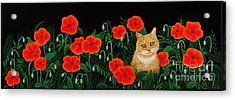 Poppy Cat Acrylic Print