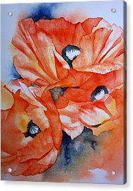 Poppy-faces Acrylic Print by Thomas Habermann