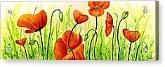 Poppy Field Acrylic Print by Annie Troe