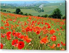 Poppy Field Acrylic Print by John Topman
