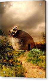 Poppy House In A Sunny Day Acrylic Print by Jaroslaw Blaminsky