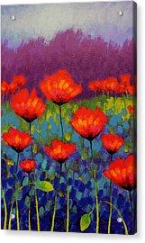 Poppy Meadow   Cropped Acrylic Print by John  Nolan